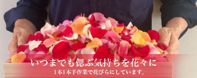 たくさんのお花で散骨