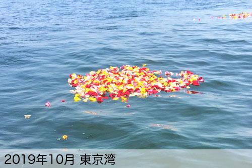 2019年10月に東京湾で散骨