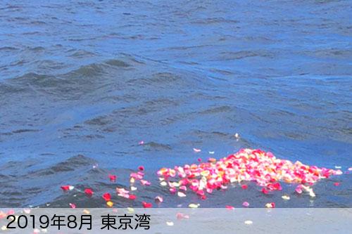 2019年8月に東京湾で散骨