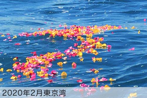 2020年2月に東京湾で散骨