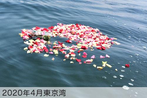 2020年4月に東京湾で散骨