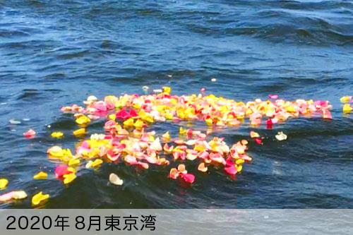 2020年8月に東京湾で散骨