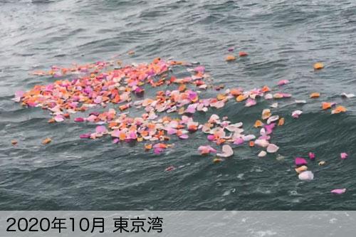 2020年10月に東京湾で散骨