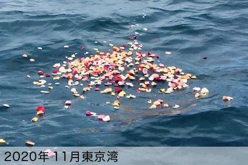 2020年11月に東京湾で散骨