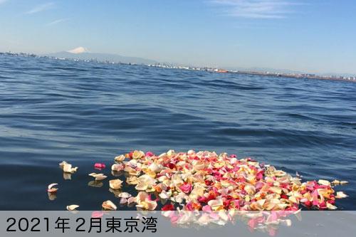2021年2月に東京湾で散骨