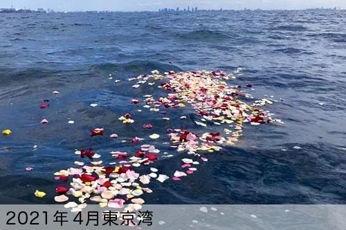 2021年4月に東京湾で散骨
